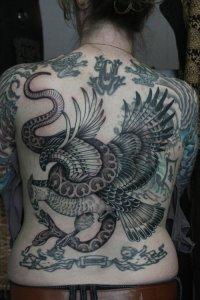 birdblastover