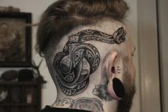 snakebottle